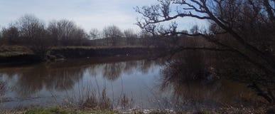 Flod på Crookham, Northumberland, England UK Royaltyfria Bilder