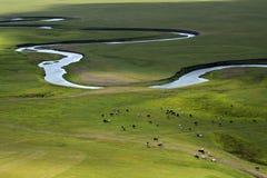 Flod på grässlätten Arkivfoto