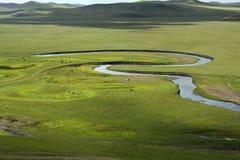 Flod på grässlätten Arkivfoton