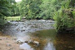 Flod på slutet av den Nidd klyftan, Knaresborough Fotografering för Bildbyråer