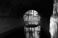 Flod på slutet av tunnelen royaltyfri bild