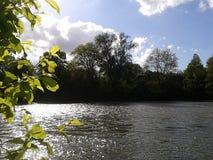 Flod på sommar Arkivfoton