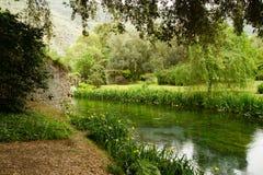 Flod på trädgården av nymphaen Arkivbild