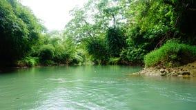 Flod på västra java Indonesien Royaltyfria Foton