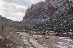 Flod på Zion National Park Utah Arkivfoto