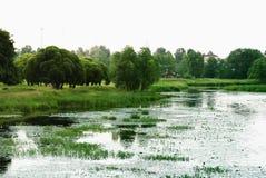 flod russia Royaltyfri Fotografi
