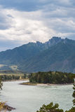 flod russia siberia för altaikatunregion Arkivfoto