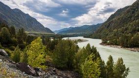 flod russia siberia för altaikatunregion Royaltyfri Foto