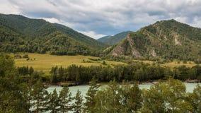 flod russia siberia för altaikatunregion Fotografering för Bildbyråer