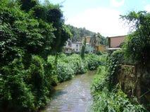 Flod São João i Barão de Cocais, med kolonin för förorenat vatten och bambupå sidorna royaltyfri bild
