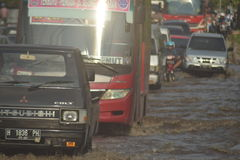 FLOD Semarang Arkivfoto