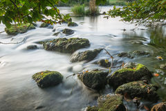 Flod Shannon Rocks Royaltyfri Fotografi