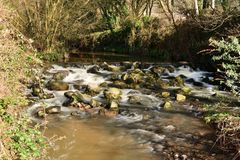 Flod Sid i Sidmouth arkivfoto