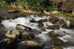 Flod Sid i Sidmouth fotografering för bildbyråer