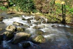 Flod Sid i Sidmouth royaltyfri bild