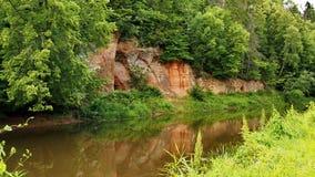 Flod, skog och röd klippa Royaltyfria Bilder