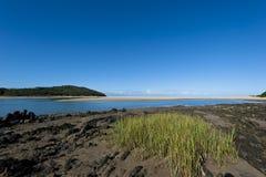 Flod-skvallra Fotografering för Bildbyråer