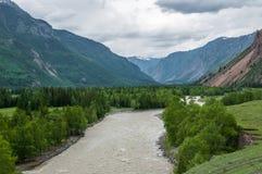 Flod som flödar i bergen Royaltyfri Bild