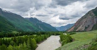Flod som flödar i bergen Royaltyfri Fotografi