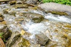 Flod som flödar i en nära sikt royaltyfri bild