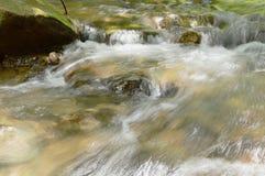 Flod som flödar på att plaska för starr och för vatten Arkivfoto