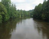 Flod som flödar till och med skog Arkivfoto