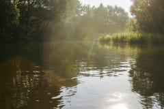 Flod som flödar i skog Arkivfoto