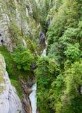 Flod som flödar till och med den Leutasch klyftan Fotografering för Bildbyråer