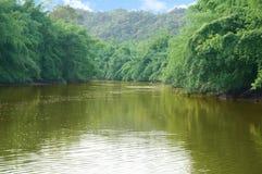 Flod som igenom flygas Royaltyfria Foton