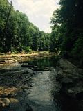 Flod som leder till vattenfallet Arkivfoto