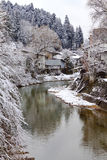 Flod som omges med Snow Arkivfoto