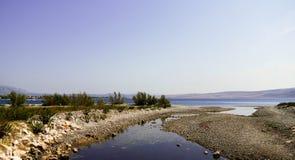 Flod som skriver in havet Fotografering för Bildbyråer