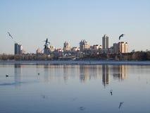 Flod, stad och seagulls royaltyfri fotografi