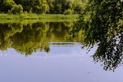 Flod; ström Arkivbild