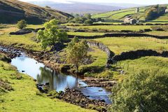 Flod Swale, Swaledale, North Yorkshire Royaltyfri Foto