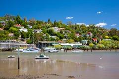 Flod Tamar Launceston Tasmania Arkivfoton