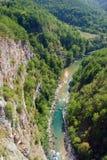 flod tara Royaltyfri Fotografi