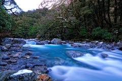Flod Te Anau, Nya Zeeland Royaltyfri Foto