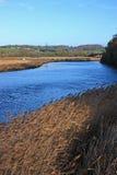 Flod Teign Royaltyfria Foton
