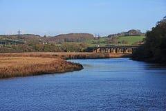 Flod Teign, Devon Royaltyfria Foton