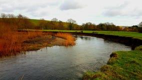 Flod Teign nära Preston, DEVON, UK arkivfoto