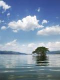 Flod Thailand Arkivbild
