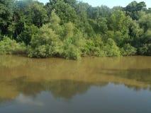 Flod Tid Arkivfoto