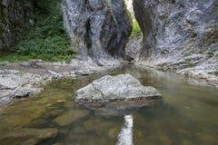 Flod till och med en kanjon Royaltyfri Foto
