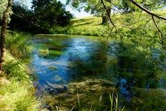Flod till och med frodigt grönt lantligt landskap i Waikato, Nya Zeeland arkivfoton