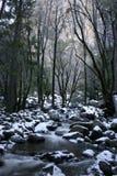 Flod under Bridalveil Falls Royaltyfri Fotografi