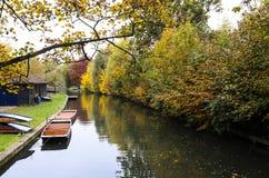 Flod under höst i Cambridge Royaltyfria Bilder