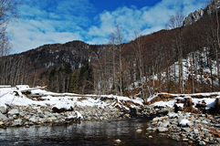 Flod under vinter Royaltyfri Fotografi