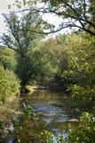 flod västra virginia Royaltyfria Foton
