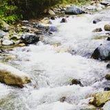 Flod vatten, liv Arkivbild
